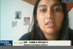Dip. Camila Rojas